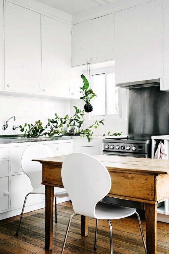 Simple kitchen design with white cabinets, indoor plants and small .