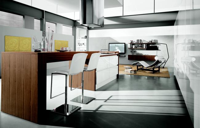 16 Modern Kitchen Designs - Contempora Kitchens by Aster Cucine .