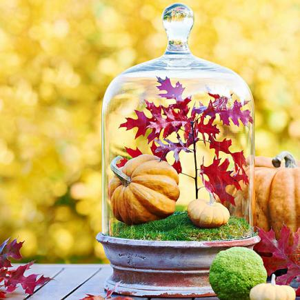 18 Cool DIY Thanksgiving Centerpieces - Shelterne
