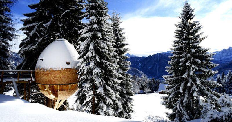 Cozy pinecone-shaped treehouses amidst the Italian Alps | Tree .