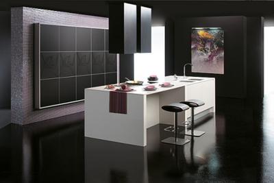 Black and White Matte Kitchen Design by Gaban