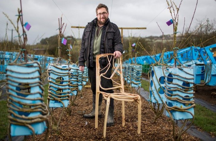 The Man Who Grows Natural Chairs   Gift Ideas   Creative Spotting .