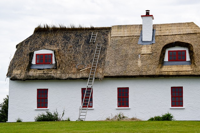 Could You Live in an Old Irish Cottage? — Shanore Bl