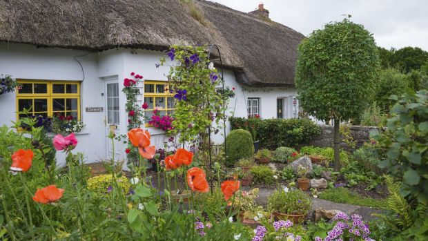 Thatch life: what it's like to live in a classic Irish country .