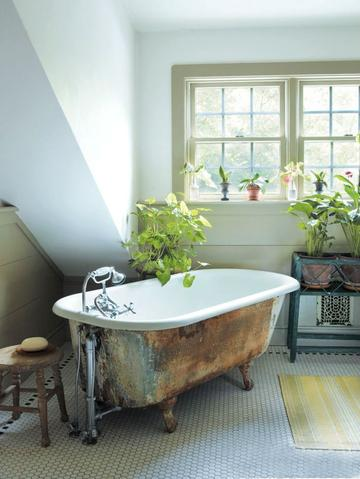 How to Buy and Care For a Clawfoot Tub 101   Hippo Hardware .