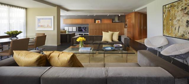 Open Concept Living Space - Contemporary - Living Room - DC Metro .