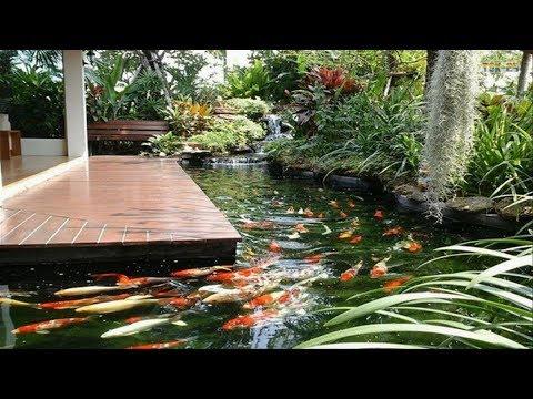 Small Garden Ideas - Cool Backyard Pond Design Ideas - YouTu