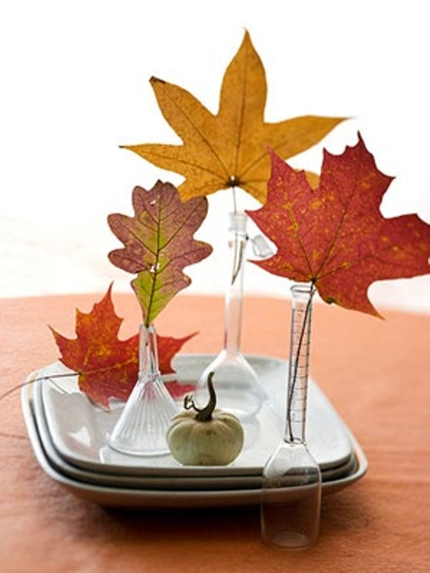 30 Cool Ways To Use Autumn Leaves For Fall Home Décor - DigsDi