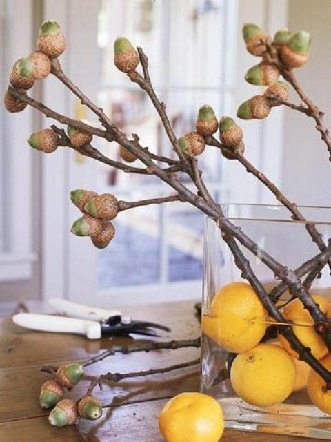 45 Cozy Acorn Décor Ideas For Your Home - DigsDi