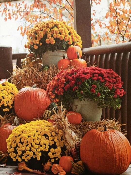 55 Cozy Fall Patio Decorating Ideas - DigsDi