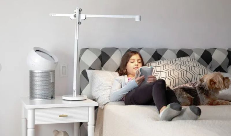 Natural Light Desk Lamps : Natural Light Desk La