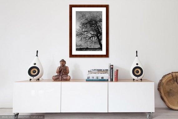 BLACK & WHITE TREE Dramatic Landscape Photography | Et