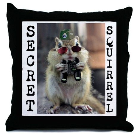 Secret Squirrel LOL Throw Pillow {Gift} | Squirrel funny, Funny .