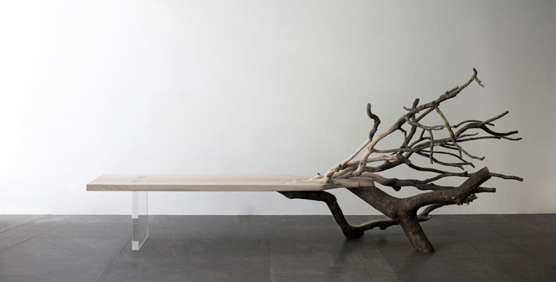 Fall Tree Bench From Glass And A Real Oak Tree | Autumn trees .