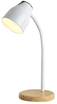 ANYE Simple Style Table Lamp Flexible Gooseneck Hose Arm Metal .