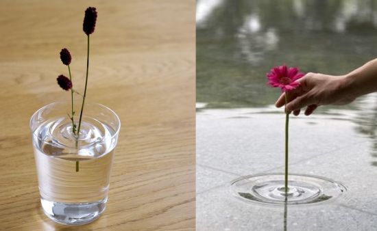 Ripple floating vases by oodesign make flowers dance on water .