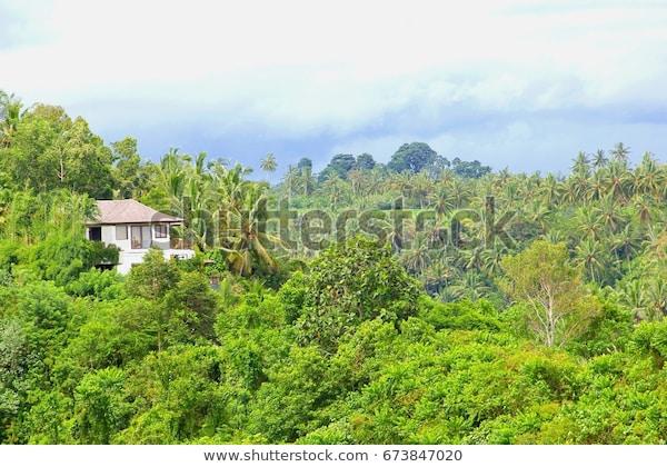 Luxury Villa House Panoramic View Jungle Stock Photo (Edit Now .