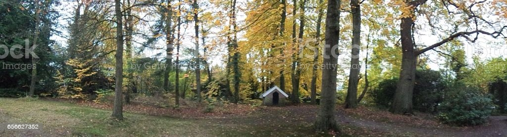 House In The Forest Panoramic View Stock Photo - Download Image .