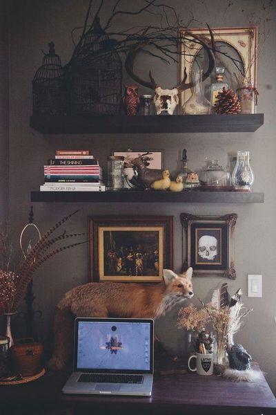 Tour My Workspace   Eccentric decor, Home office design, Taxidermy .