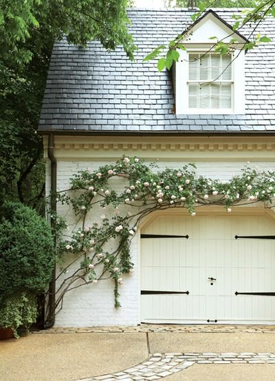 Things We Love:Climbing Vines - Design Chic | House exterior, My .