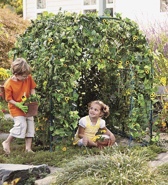 grow your own hideaway | Gardening for kids, Outdoor, Sunflower hou