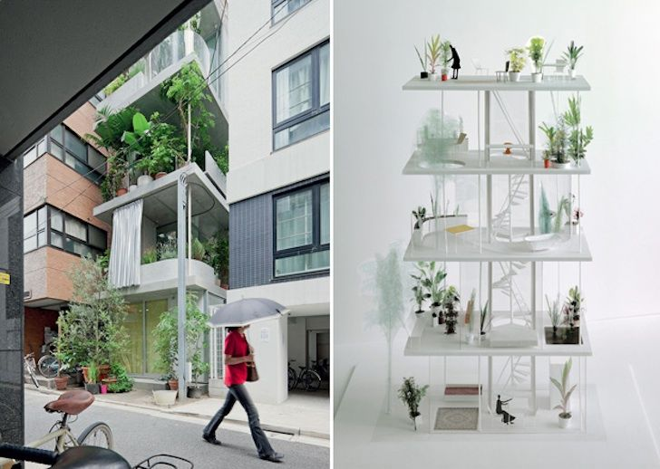Ryue Nishiziwa's gorgeous vertical garden house takes root in .