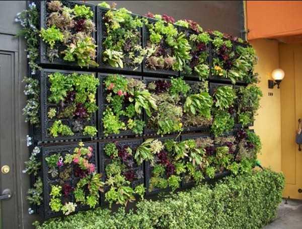 Vertical Garden Design Adding Natural Look to House Exterior and .