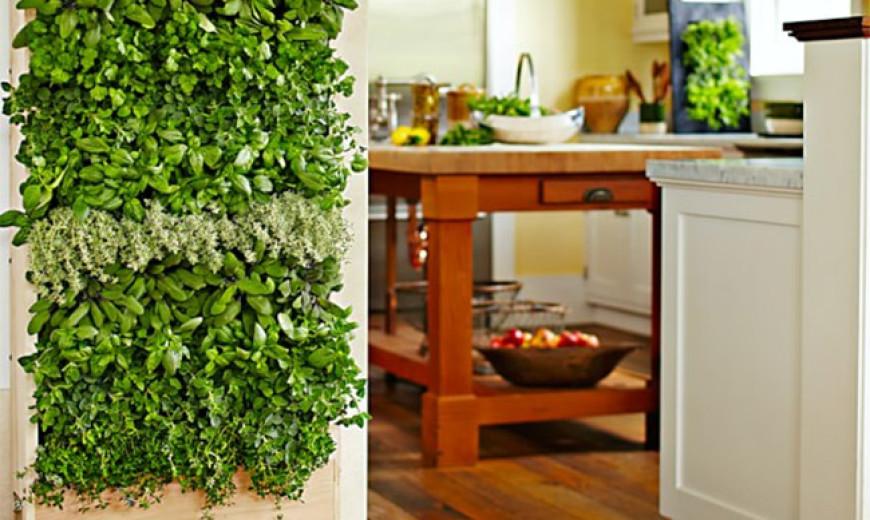 8 Simple Ways To Create An Indoor Vertical Garden In Your Ho
