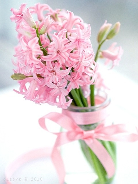 37 Hyacinths Décor Ideas To Breathe Spring In - DigsDi