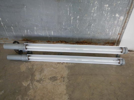 Industrial Tube Neon Lamp from Cartem Milano, 1950s for sale at Pamo