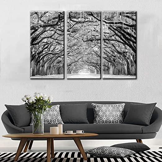 Amazon.com: TUMOVO 3 Panels Black White Tree Canvas Wall Art - Oak .