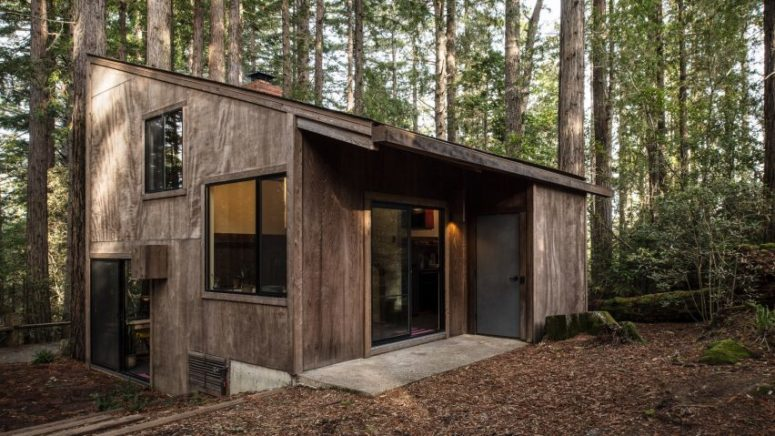 Mid-Century Sea Ranch Cabin In The Woods - DigsDi