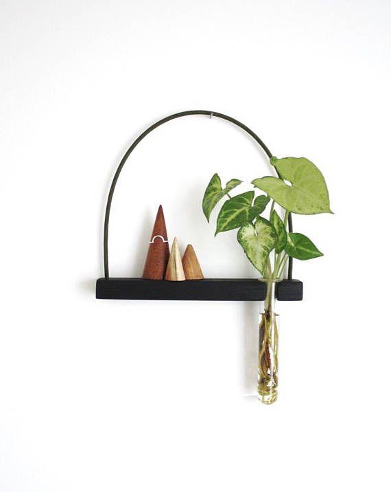 wall vase, hanging shelf, hanging vase, mini shelf, test tube .