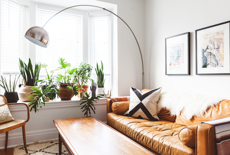 15 Plant-Filled Living Rooms for Serious Decor Inspirati