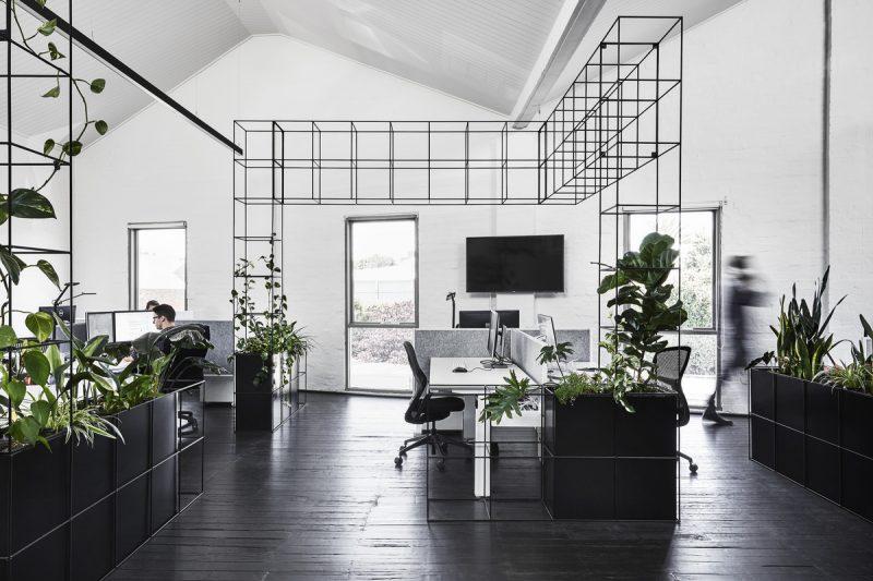 Build Australia | A minimalist and monochromatic office design .