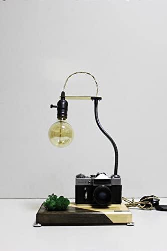 Amazon.com: Table lamp Pride&Joy stabilized moss gifts for him old .