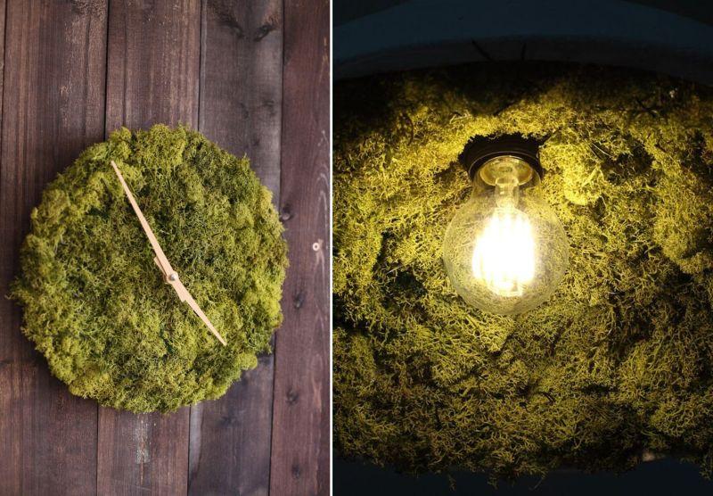 Wall Clock & Ceiling Lamp Made From Natural Mo