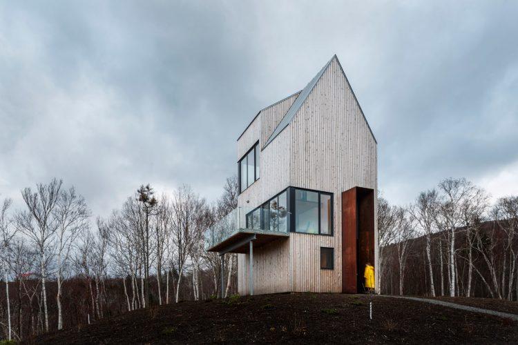 Tall And Narrow Wooden Cabin House In Nova Scotia - DigsDi