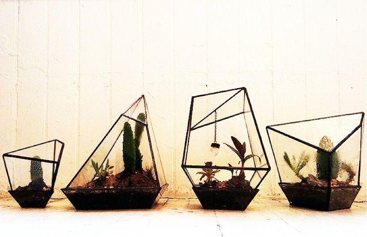 terrariums, Assembly New-York | Terrario geométrico, Disenos de .