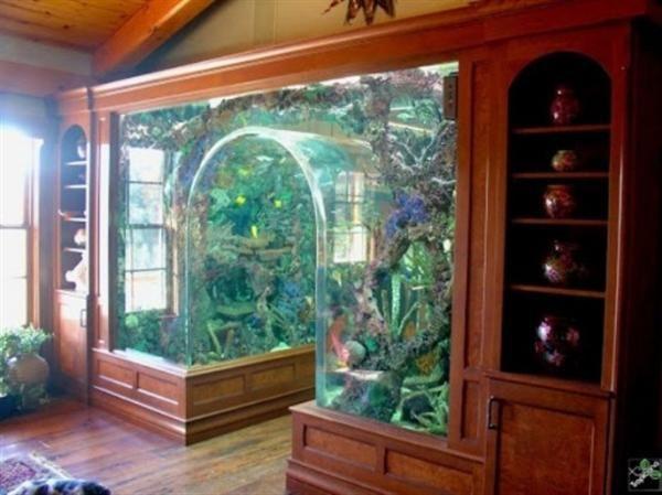photo of outdoor aquarium   Amazing aquariums, Aquarium design .