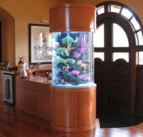55 Original Aquariums In Home Interiors   DigsDigs   Aquarium desi