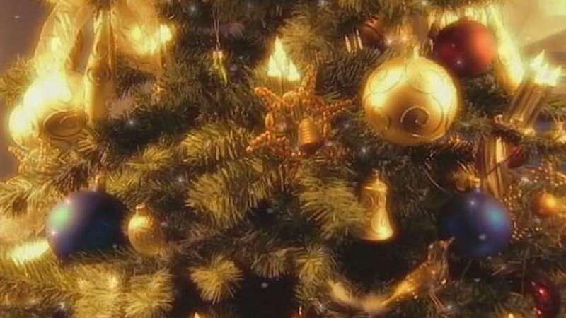 Christmas tree | Tradition, History, & Facts | Britanni