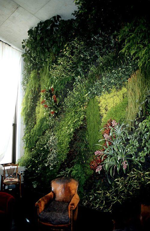 16 Peaceful Indoor Living Wall Designs For Any Home - DigsDigs .