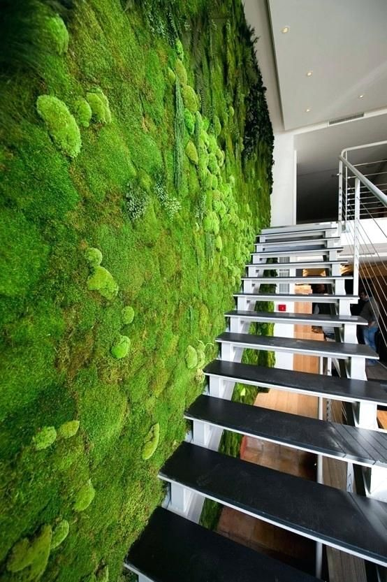 Living Wall Indoors Peaceful Indoor Living Wall Designs For Any .
