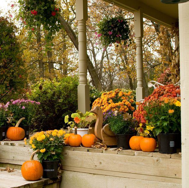 20 Best Fall Porch Ideas - Modern Autumn Front Porch Dec
