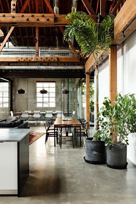 High Ceilings & House Plants | Rustic house, House design .