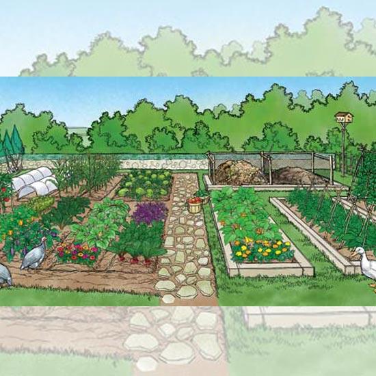 82 Sustainable Gardening Tips - Organic Gardening - MOTHER EARTH NE