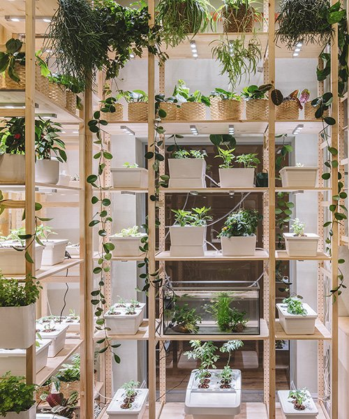 the IKEA home of tomorrow is a self-sufficient, plant-filled heav