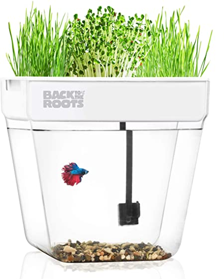 Amazon.com : Water Garden, Self-Cleaning Fish Tank That Grows Food .