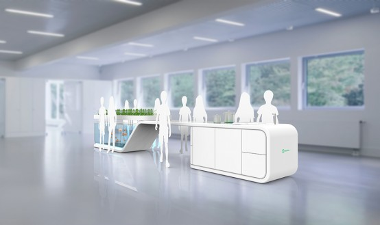 Self-Sustaining Future Kitchen With Fish And Plants - DigsDi